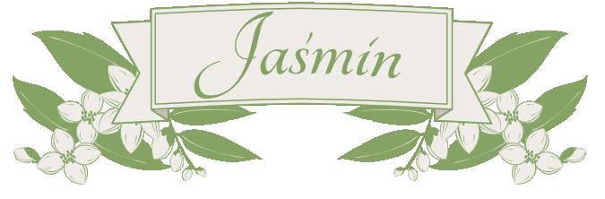 Jaśmin Kwiaciarnia w Katowicach